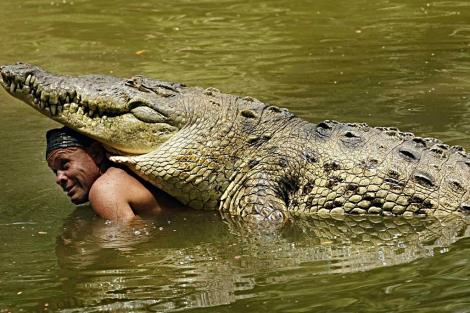 cocodrilo con su cuidador