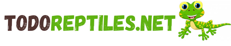 Bienvenidos a tu web sobre REPTILES