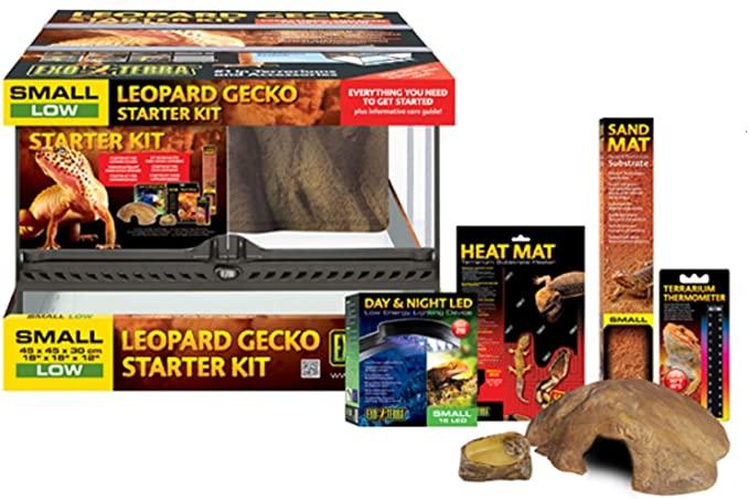 kit inicio terrario gecko