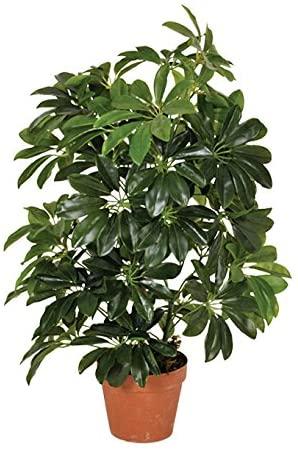 Planta artificial cheflera 65 cm altura