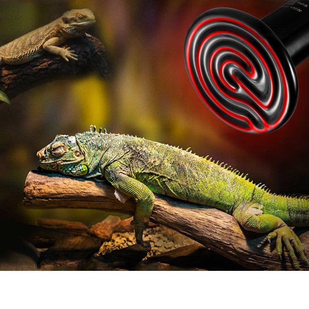 calefaccion para reptiles