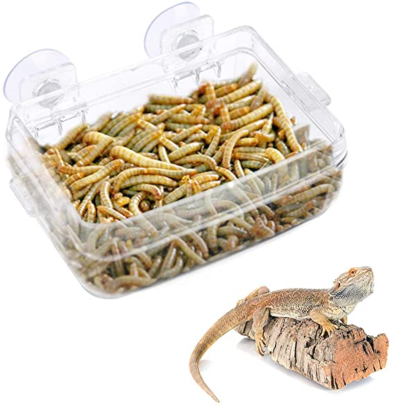 comedero antiescape reptiles