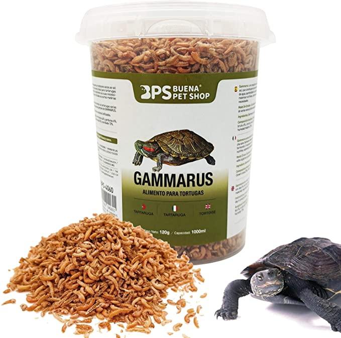 comida reptiles