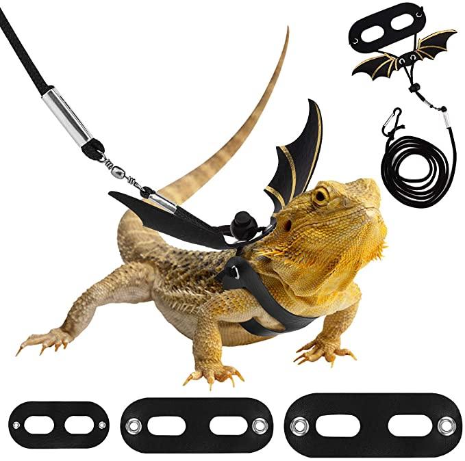 correa y arnes ajustable reptil