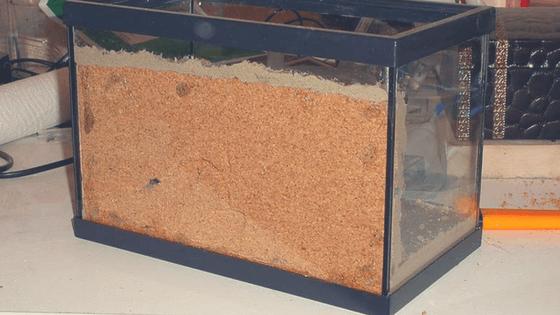 fondo-corcho-terrario