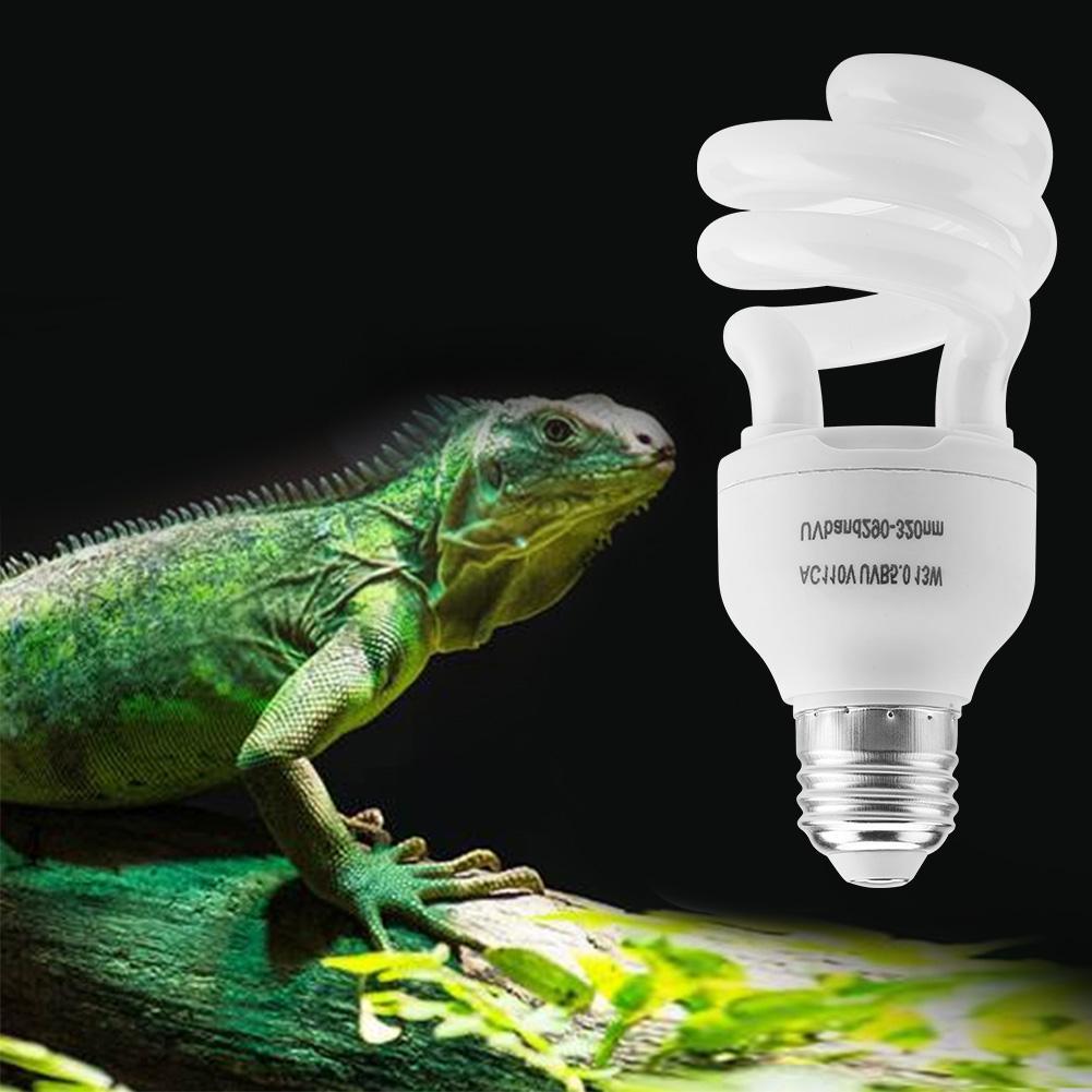 iluminacion para reptiles