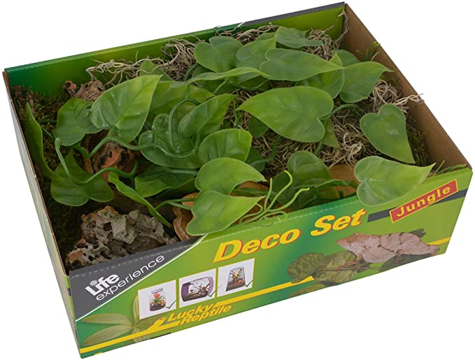 kit decoracion terrario lucky reptile