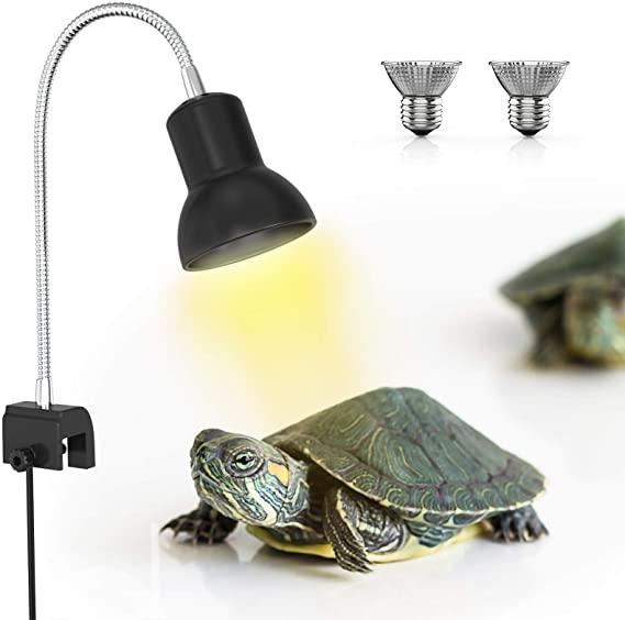 luz reptiles