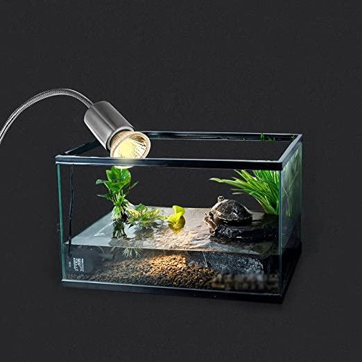 luz para tortuga