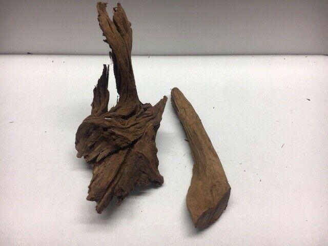 madera pantano